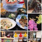 VOL.5770 6月季節料理&茶道入門